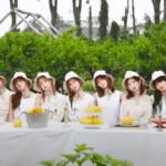 【K-POP歌詞翻訳】TWICE-TURTLE (亀)